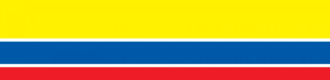 bandera-1.jpg